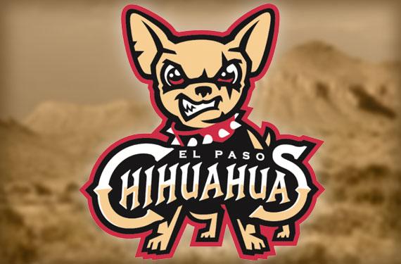 chihuahuas-header
