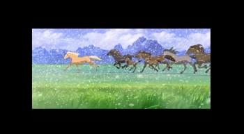 paint spirit stallion of the cimarron # 71