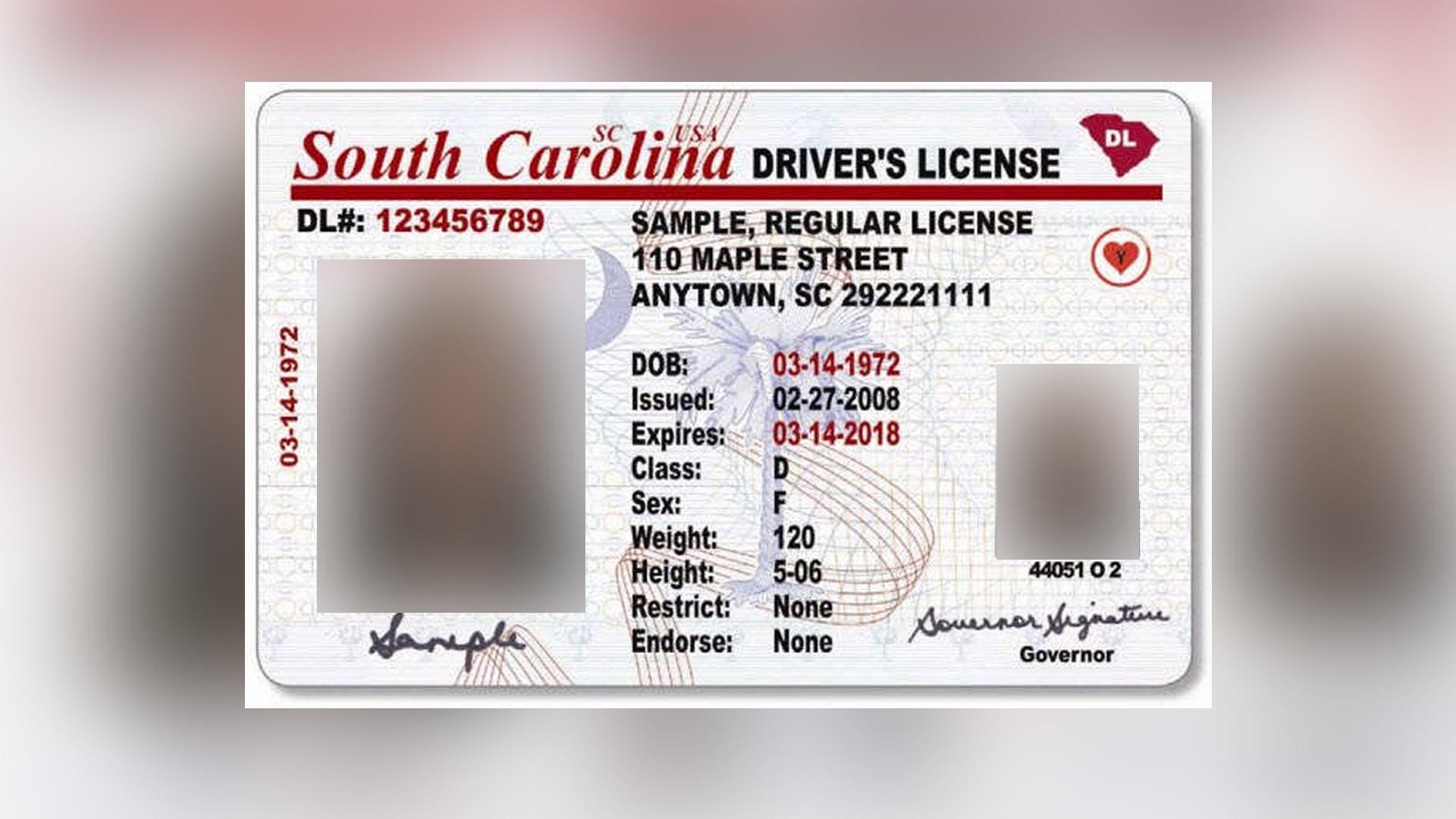 South Carolina Dmv Online Renewal