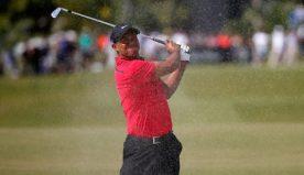 Tiger prepared for 'fast' Carnoustie Open Championship