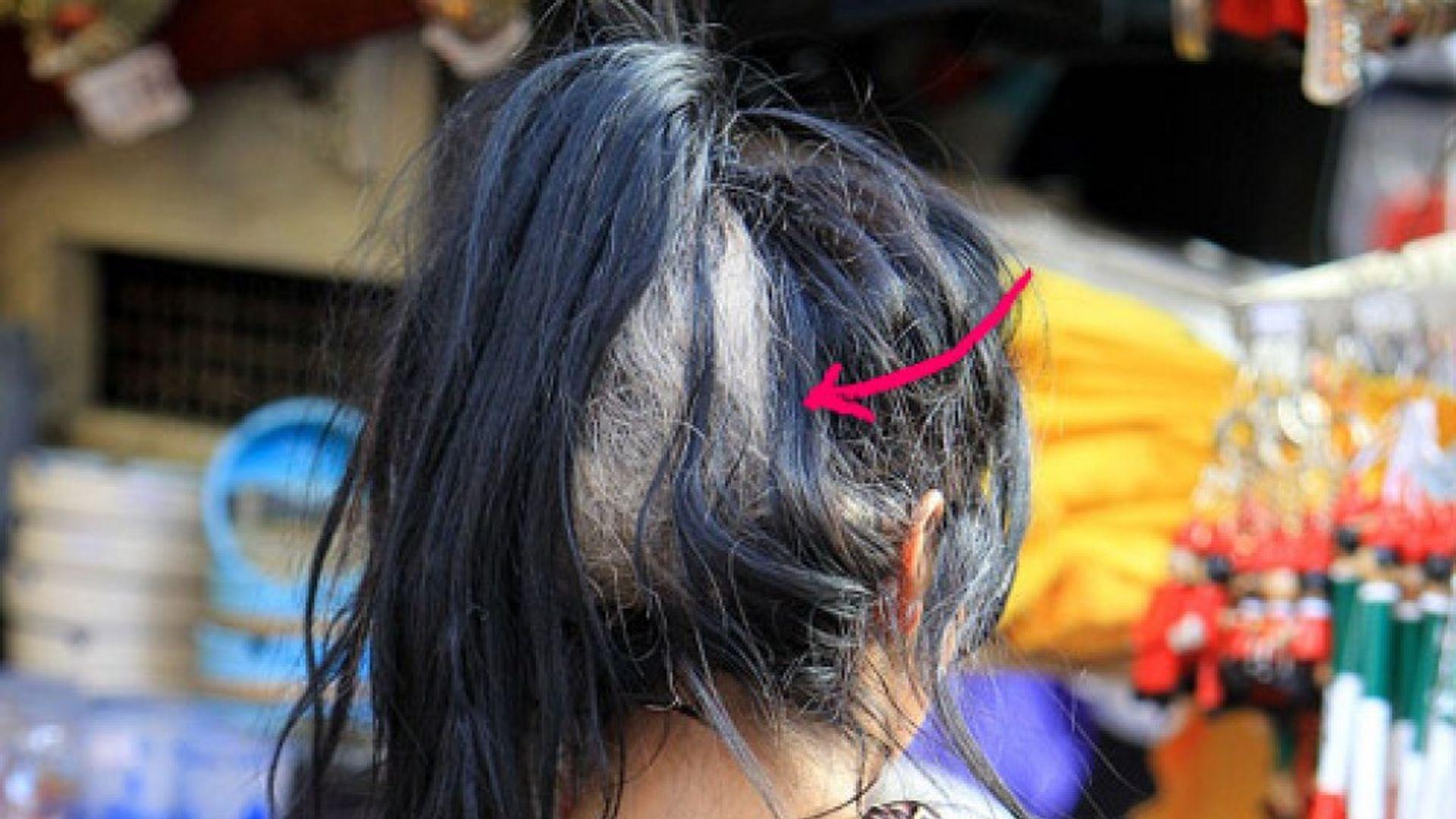 Frisur Palme