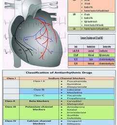 oplus heart centre cardiologists book appointment online cardiologists in hirapur dhanbad justdial [ 1275 x 1650 Pixel ]