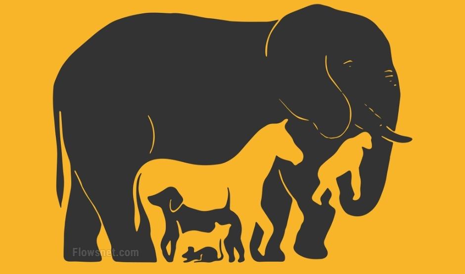 Ck dzīvniekus redzi šajā attēlā? Ieraksti komentārā