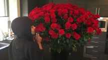 Rosen Hunde & Sport Feierten Die Stars Valentinstag
