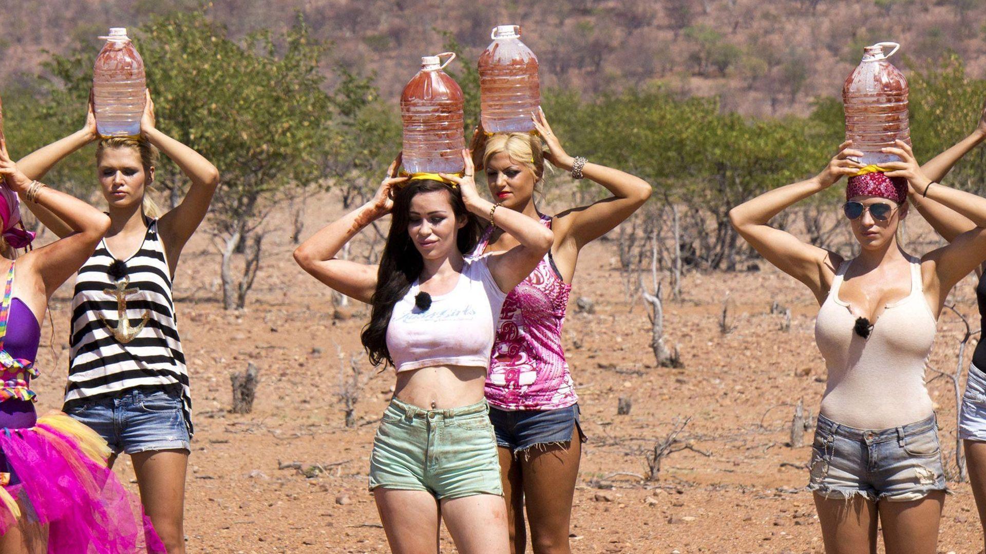 Zum Abschalten QuotenFlop Wild Girls im Sinkflug