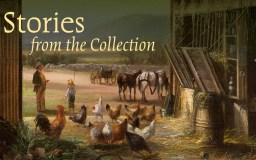 Stories from the Collection