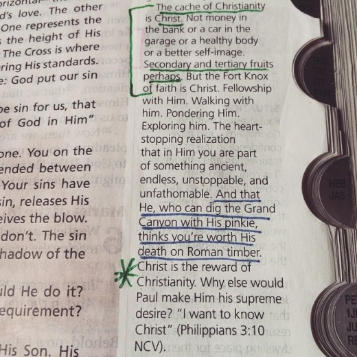 Max Lucado snippet from his Life Lessons NKJV study Bible.