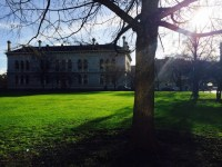 Contented Gypsy | Trinity College