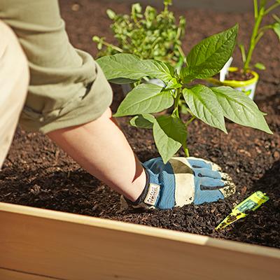 Raised Bed Soil Soils The Home Depot