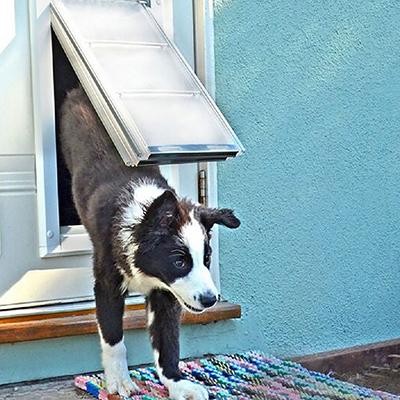 sliding door inserts dog doors pet