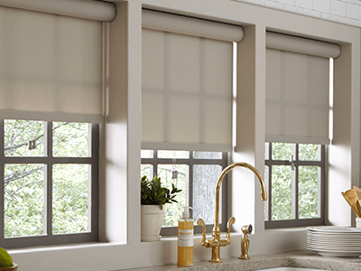 blinds for kitchen windows stainless steel faucet with pull-down spray window treatments at the home depot roller shades