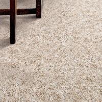 Carpet: Carpet Samples, Carpeting & Carpet Tiles at The ...