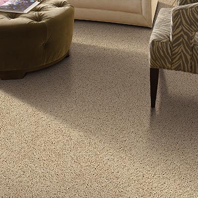 shop carpet at the