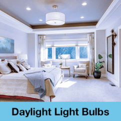Standard Living Room Light Bulb Color Ideas With Dark Brown Furniture Bulbs The Home Depot Daylight