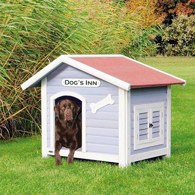 pet supplies dog food