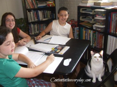 Children working on school work with their cat