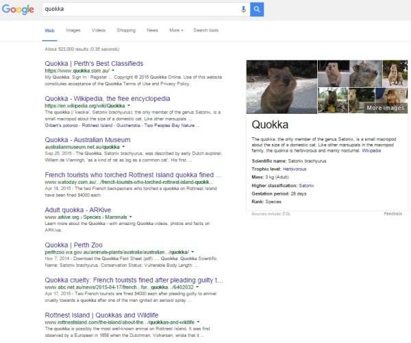 quokka-google