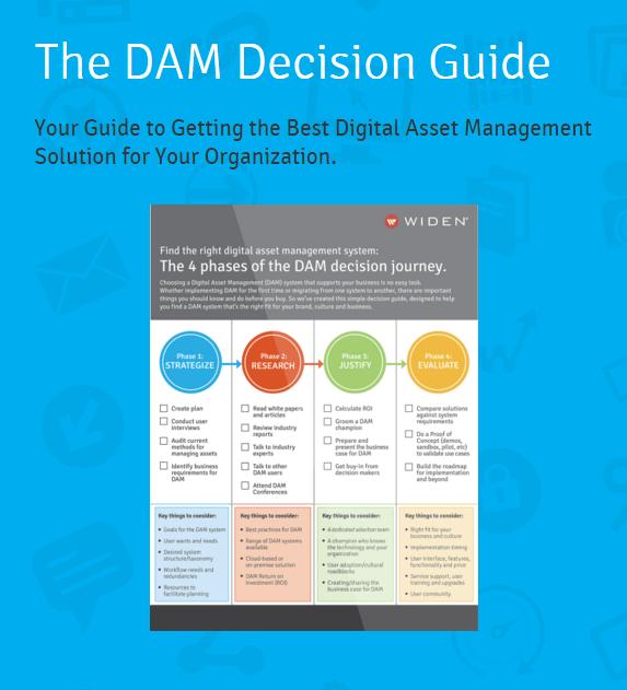 DAM-decision-guide-cover