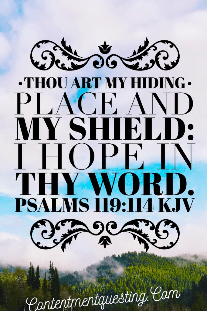 hope, bible, inspiration, scripture, psalms, verse