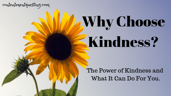 choose kindness, kindness, love, random acts of kindness, kindness quotes, parenting, motherhood, inspiration, power of kindness, contentment questing