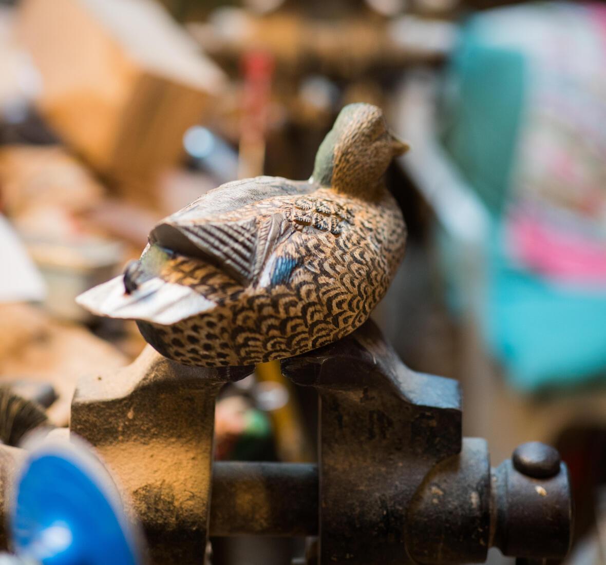 les premieres formes de canard solognac