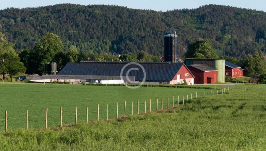 Lundestad gård 1