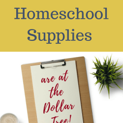 best homeschool supplies at the dollar tree