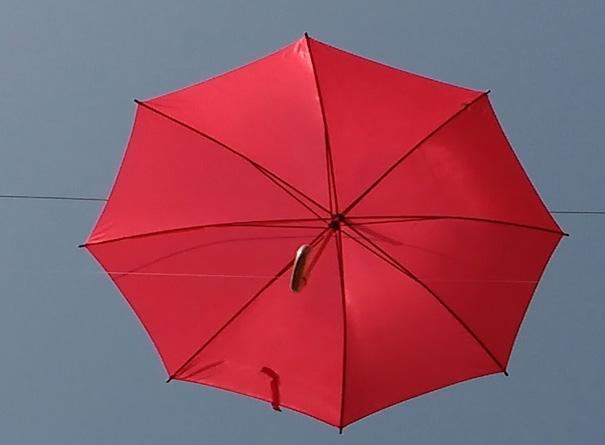 Sandra's Umbrella