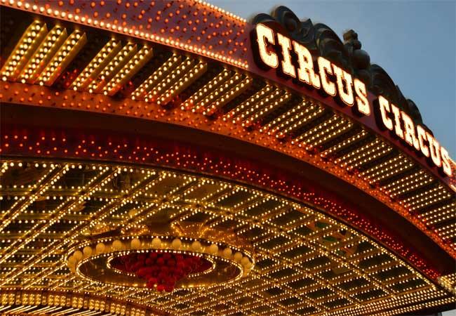 Circus at the Park