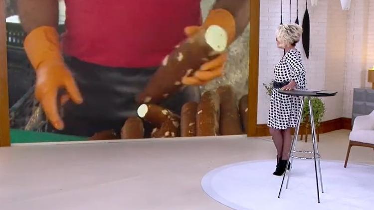 Ana Maria Braga - Reproduction/TV Globo - Reproduction/TV Globo