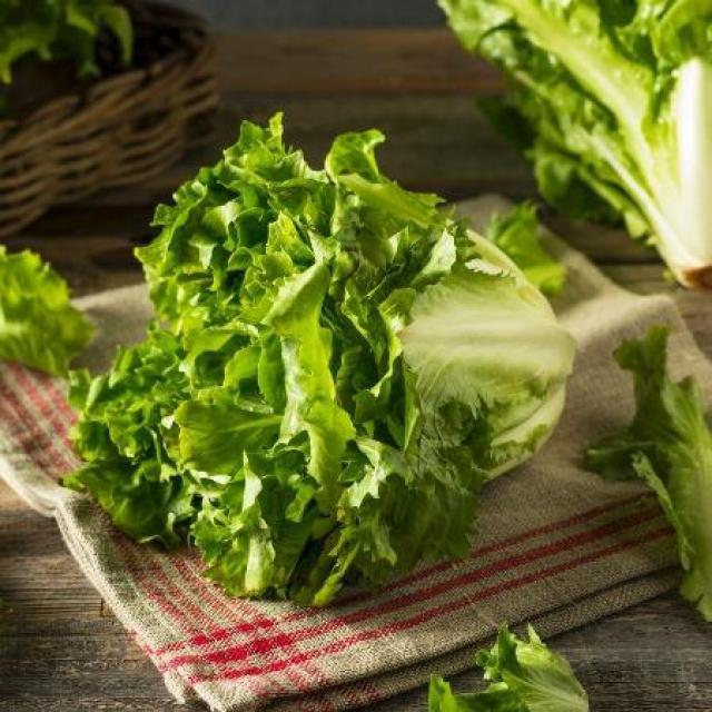Escarola fortalece os ossos e previne anemia; veja 9 benefícios da verdura  - 26/03/2021 - UOL VivaBem