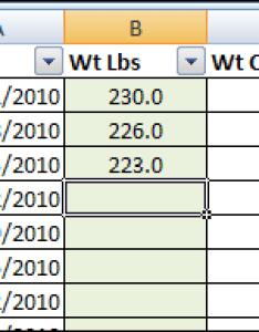 Weight tracking also excel loss tracker  contextures blog rh contexturesblog