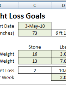 Weightstone also excel weight loss tracker in stone  contextures blog rh contexturesblog