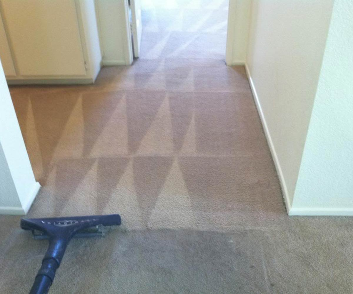 Carpet Cleaning Services Raleigh, Nc  Contour Cleaning