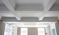 Diy Coffered Ceiling  Review Home Decor