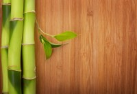 How to Clean Bamboo Floors | Contractor Quotes