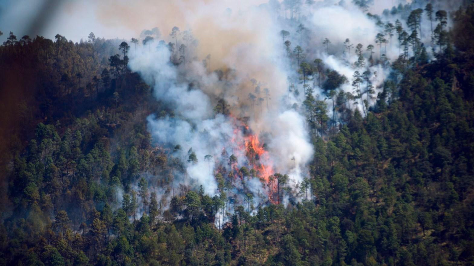 Imagen de un incendio producido por el cambio climatico
