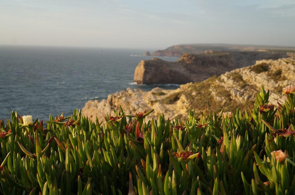 10 das melhores praias da Costa Vicentina