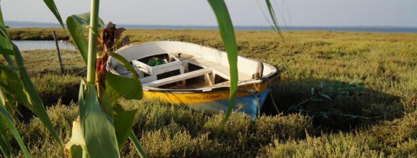 porto palafitico carrasqueira