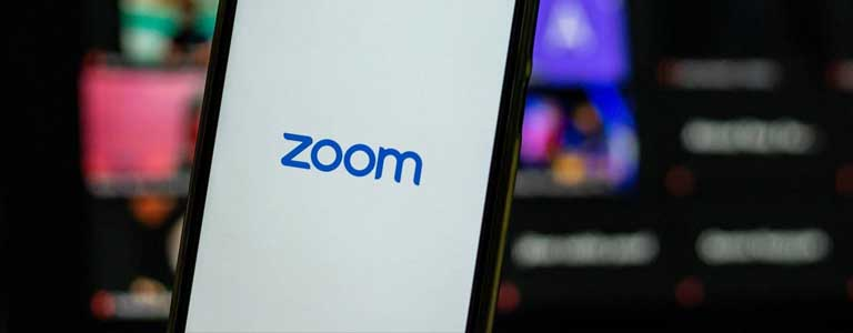 Articulo Zoom