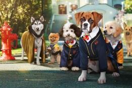 Crítica Escuela de cachorros
