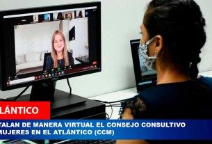 virtual consejo 1