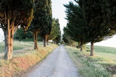 Contrasti Foto (159)