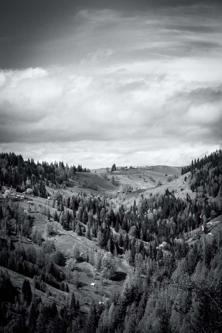 Five Secrets to Creating Better Black & White Images