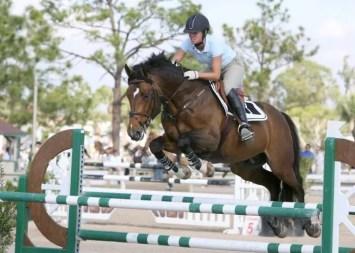 concours saut équitation