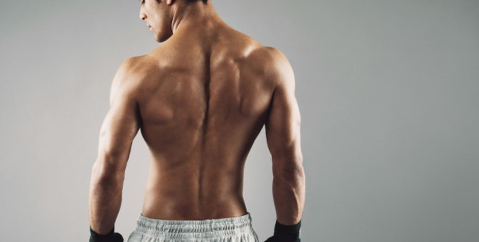We Got Your Back: The Complete Guide to Back Training - [CTRL-ALT-FIT]