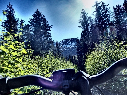 Snow topped mountains through the handlebars