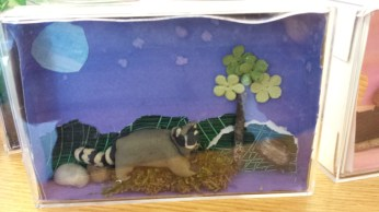 Raccoons are nocturnal, so this student chose a starry background.
