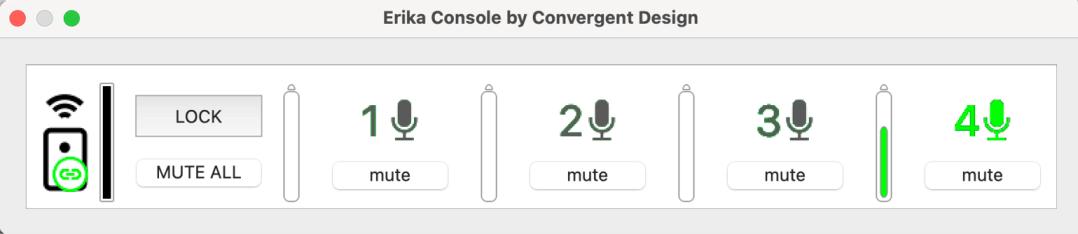 Erika control console