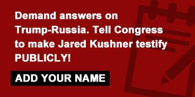 demand Kushner testify